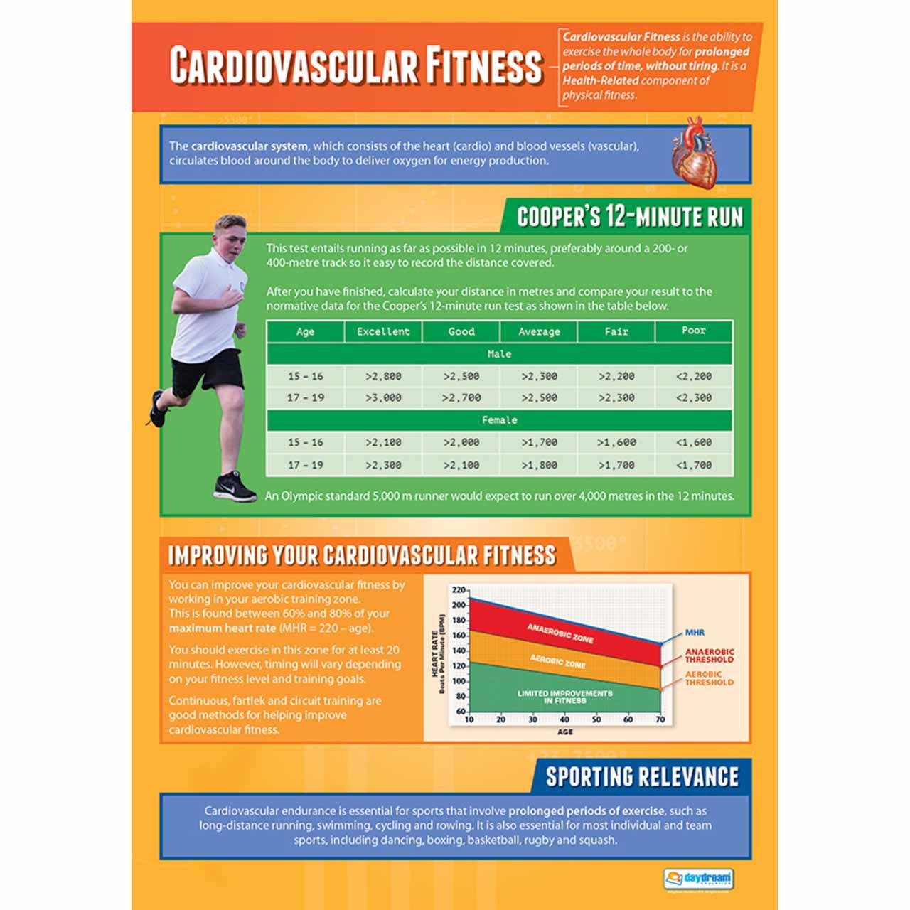 PE005L - Cardio-Vascular Endurance-Laminated