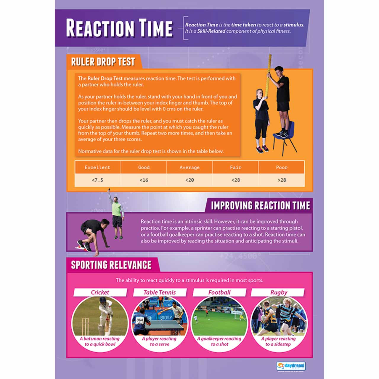 Reaction Time-Laminated