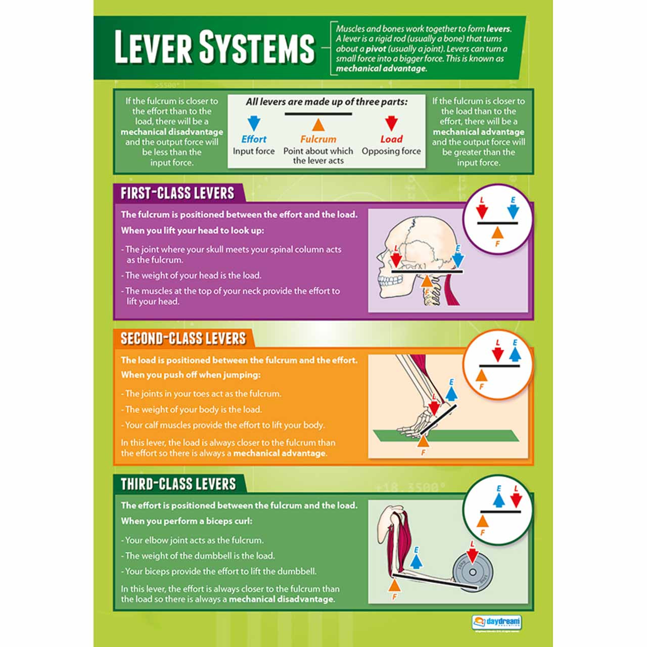 PE049L - Lever Systems