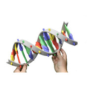 DNA Starter kit