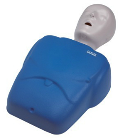 CPR and Basic Life Support