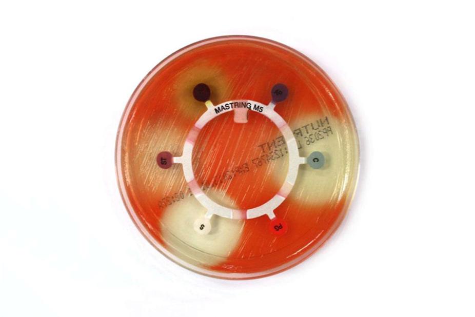 bio-dc-mb-3-img1h-1-.png