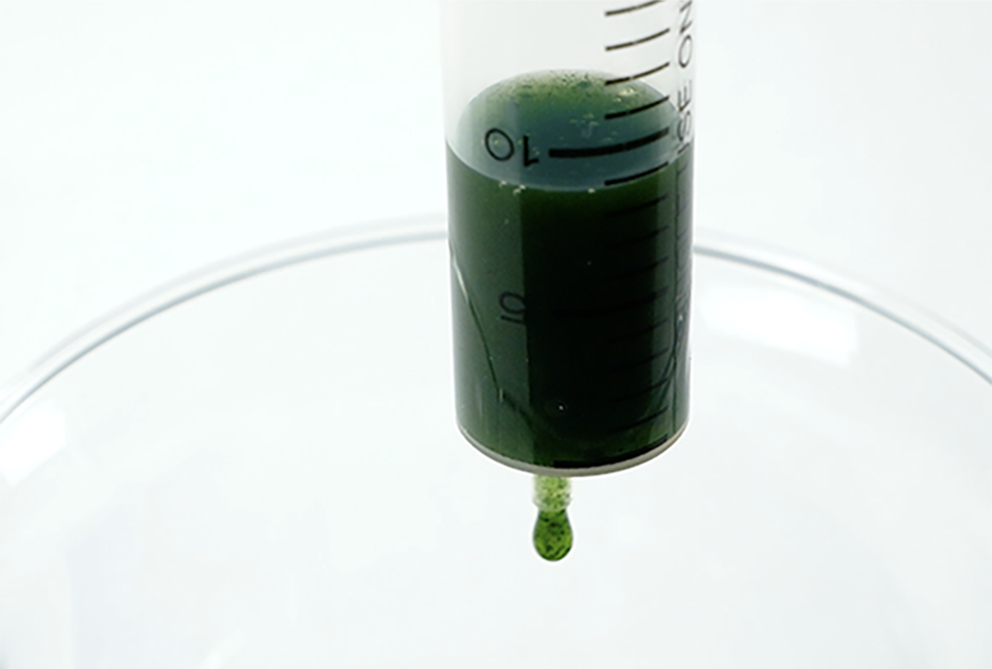 making-algal-balls-1.png