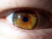 hazel-eye2.jpg