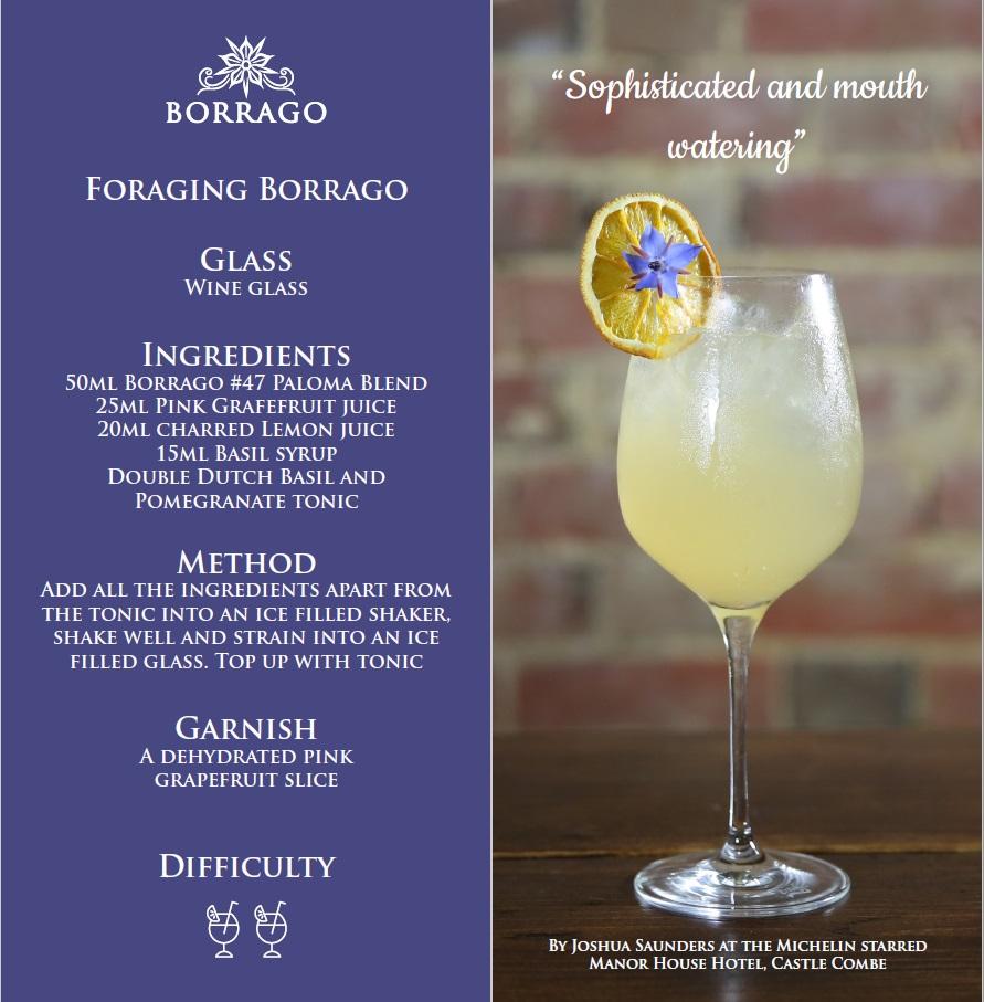 borrago-foraging-borago-pink-grapefruit-and-double-dutch-non-alcoholic-cocktail-spirit-mocktail.jpg