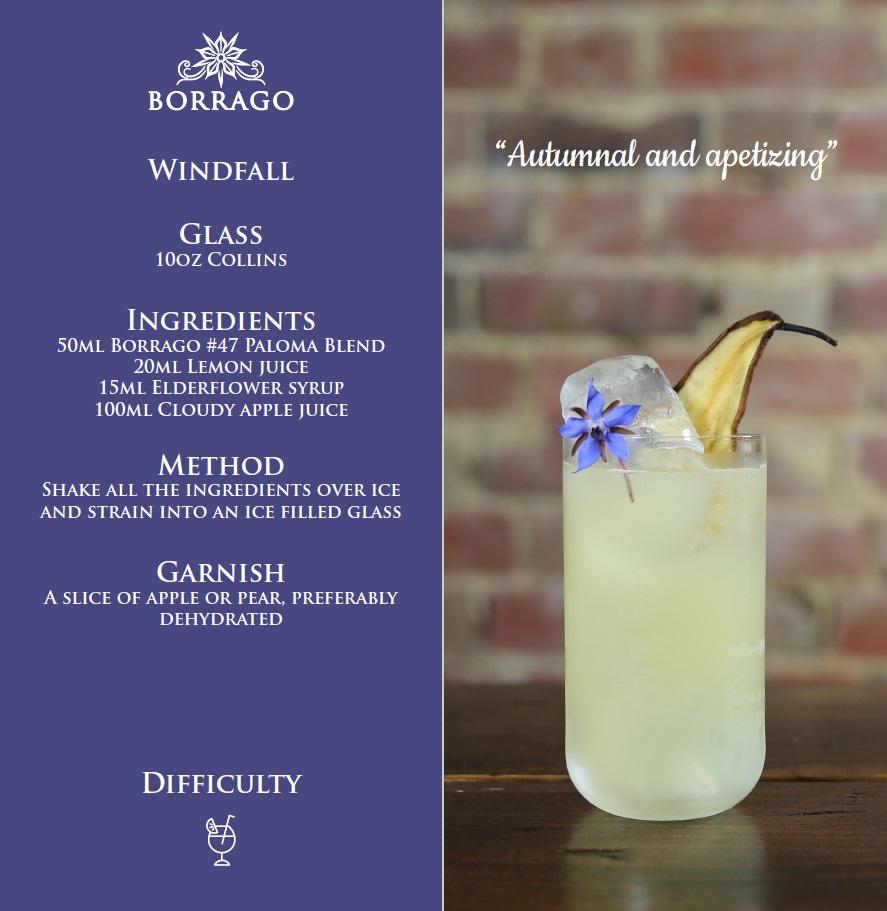 borrago-windfall-apple-cucumber-non-alcoholic-cocktail-spirit-mocktail.jpg