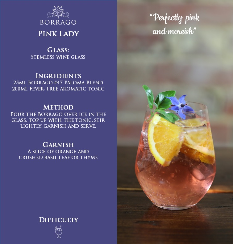 pink-lady-borrago-and-tonic-non-alcoholic-cocktail-spirit-mocktail