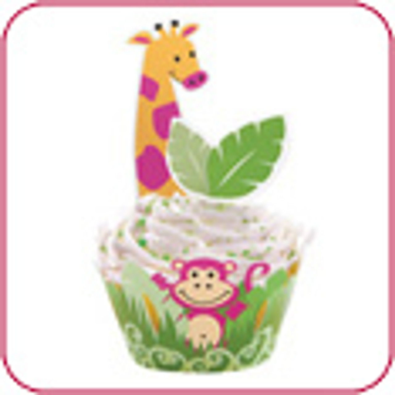 Cupcake Kits & Decorating Sets