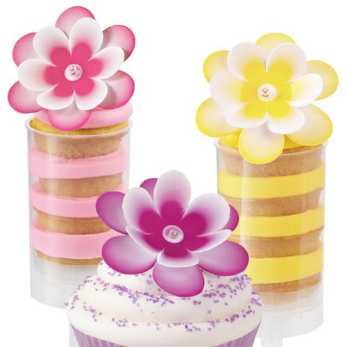 Multi-Color Flowers Pix