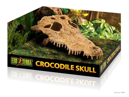 Exo Terra Crocodile Skull Hide / Cave