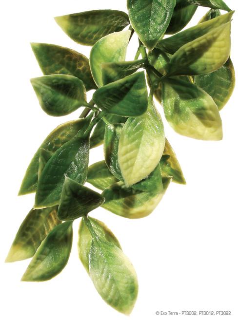 Exo Terra Hanging Plastic Plant - Mandarin