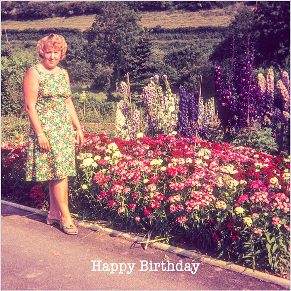 Celina Digby x Honovi Cards - Unique Funny Nostalgic Greeting Card - Lady Gardener