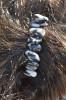 Marble Zebra Jasper Stone French Barrette - 60 mm