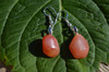 Apricot Agate Earrings