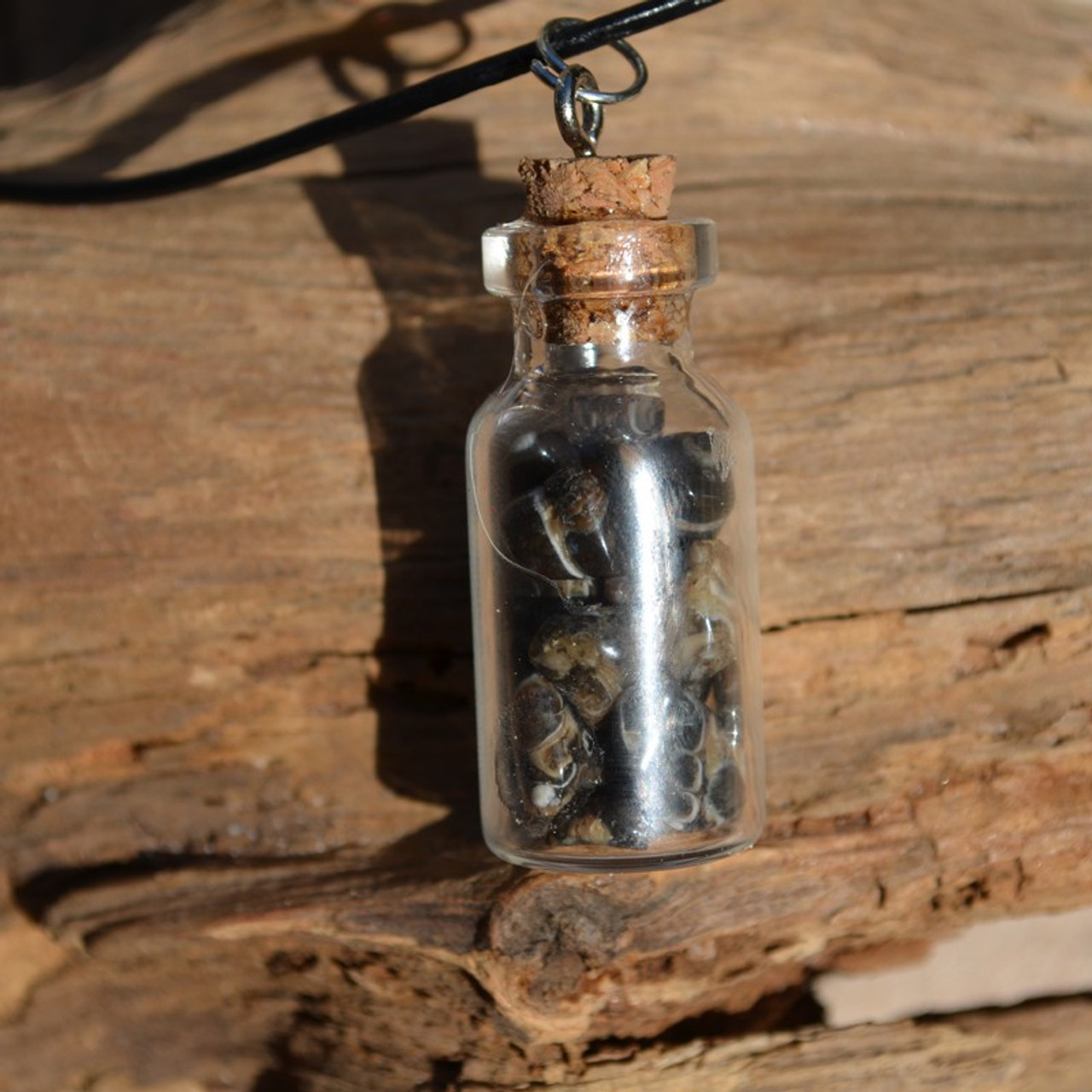 Turritella Stones in a Glass Vial on a Leather Cord Necklace