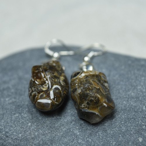 Turritella Stone Dangling Earrings