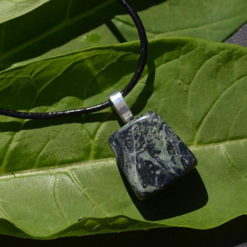 Kambaba Jasper Stone on a Leather Thong Necklace