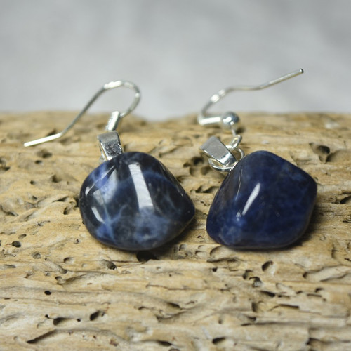 Sodalite Dangling Earrings