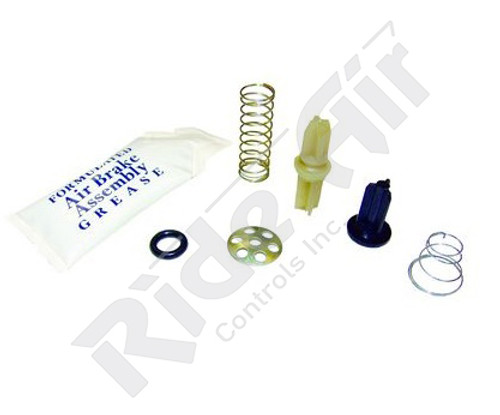 Model IP Check Valve Kit (109494-G3)