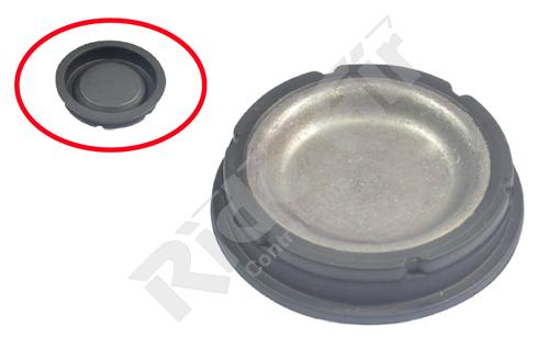 Caliper Plug (RAD10249)