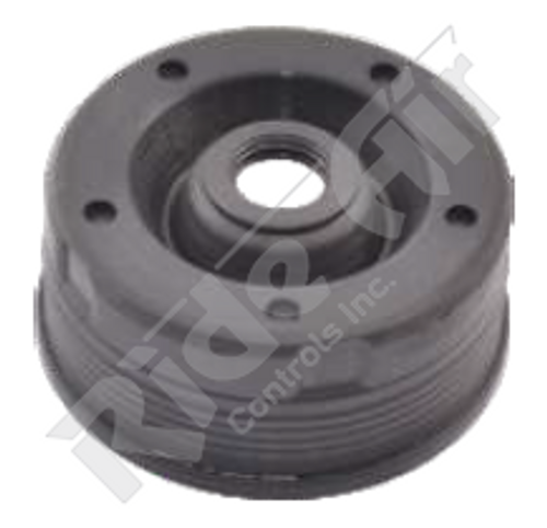 Adjuster Seal (RADK20)