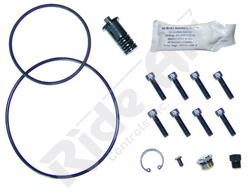 Minor Seal Kit (294205)