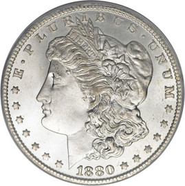1880 Morgan (Extremely Fine to Almost Uncirculated)