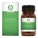 Echinacea High Potency