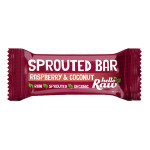 Raspberry & Coconut Sprouted Bar