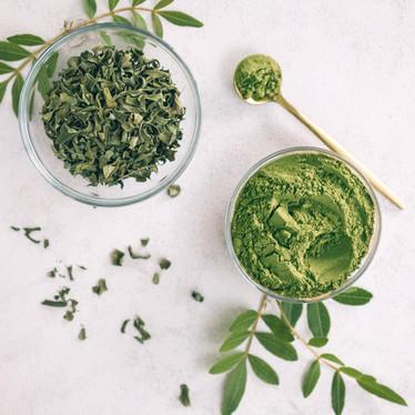 Moringa: Mother Natures' plant protein powerhouse