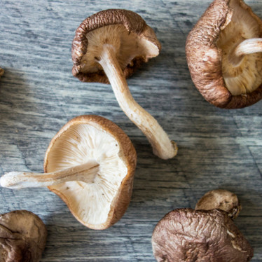 Why Shiitake Is The Wonder Funghi For Immunity
