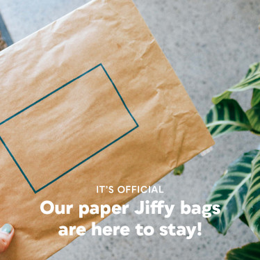 It's Official. Our Paper Jiffy Bags Are Here to Stay!