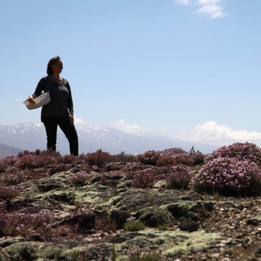 What makes Central Otago thyme so special?