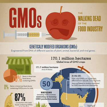 GM (Genetically Modified) Food – What do you know?