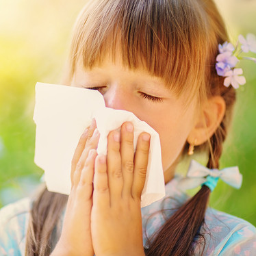Hayfever Season Begins: Fast & Effective Herbal Help for All Ages