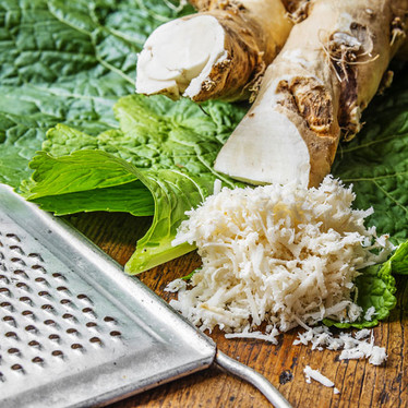 Getting to the root of horseradish