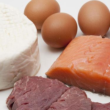 Animal Protein Diet & Disease Risks