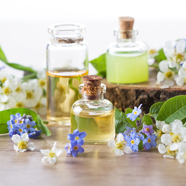 Top 10 Essential Oils and Its Amazing Uses