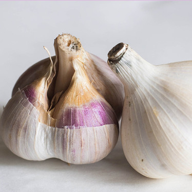 Aged Garlic Extract: For a Healthy Heart and Immune System
