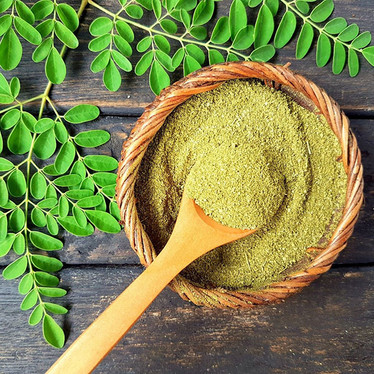 Moringa: Mother Natures' plant protein powerhouse