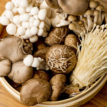 Mushrooms – not just a pizza topping