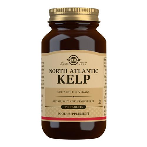 North Atlantic Kelp