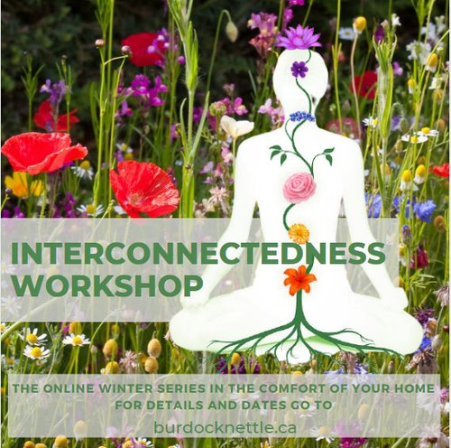 We will be exploring the Interconnectedness of the Body, Health and Harmony with Nature, Introduction to how Vibrations affect our wellbeing and how to use colour, sound, herbs and more to enhance our day to day life.