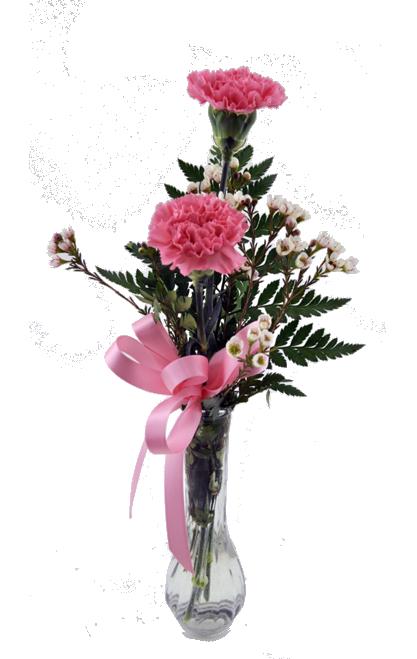 Double Carnation Bud Vase