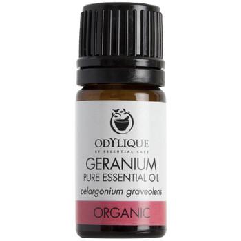 Odylique essensiell olje Geranium denne typen essensiell olje fra geranium regnes som den fineste kvalitet som er mulig (Bourbon). Den har et urteaktig, lett roseduft og er dampdestillert fra bladene. Den har gjenopprettende og balanserende egenskaper for alle hudtyper, spesielt moden hud. Den kan også fungere fordelaktig på plager relatert med PMS og overgangsalderen.