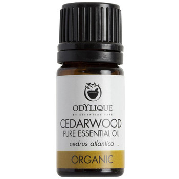 Odylique essensiell olje Sedertre den eneste essensielle oljen som anbefales for aromaterapi under graviditet. Virker beroligende og antiseptisk. Kan hjelpe til å lette på bronkier, på fet hud eller hodebunnsproblemer. Fungerer utmerket som luftfrisker eller for å frastøte insekt.  Sertifisert økologisk av Soil Association.