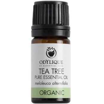 Odylique essensiell olje Tetre er antiseptisk, antifungal og antiviral. Kan blant annet brukes ublandet til forkjølelsessår (herpes labialfis) fotsopp og vorter