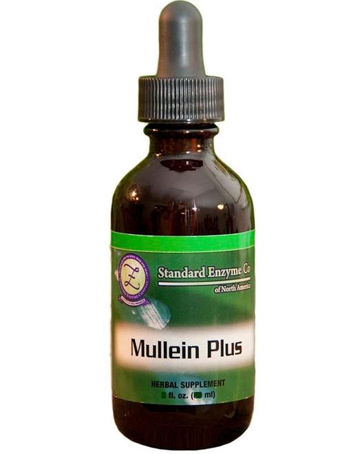 Standard Enzyme Mullein Plus 4oz