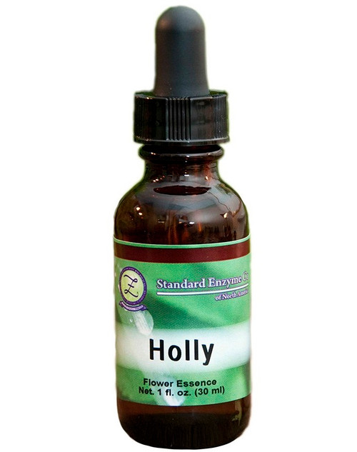 Standard Enzyme Holly 1oz Liquid