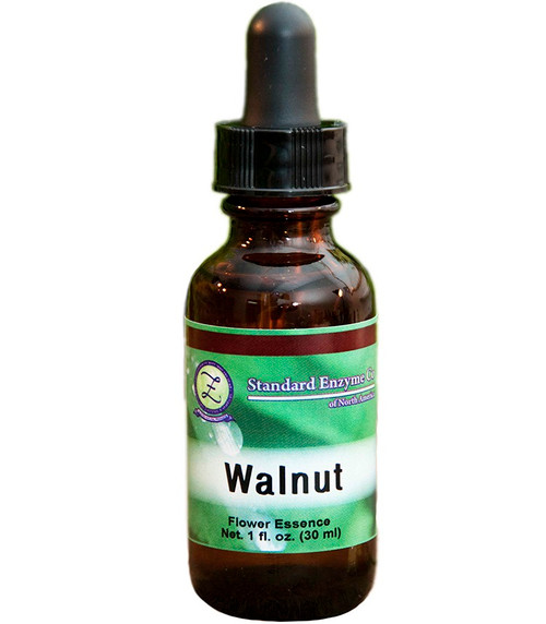 Standard Enzyme Walnut 1oz Liquid